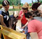 Игра-квест «Коллективный разум» для педагогов ГУО детский сад-начальной школы №7 - фото 2